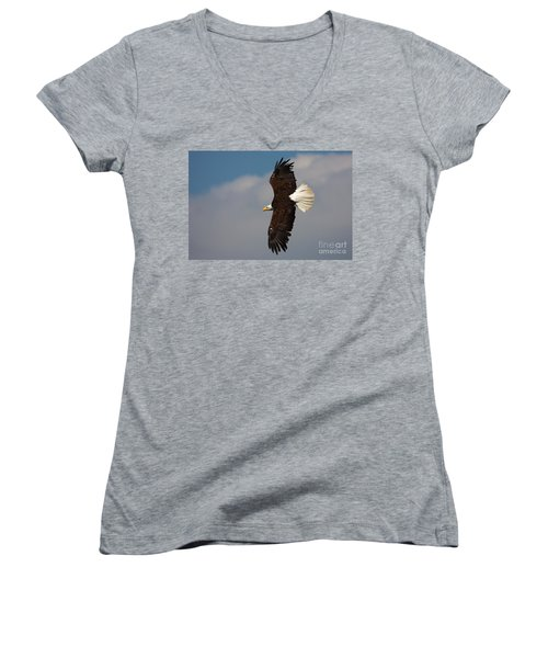 American Bald Eagle In Flight Women's V-Neck T-Shirt (Junior Cut) by Nick  Biemans