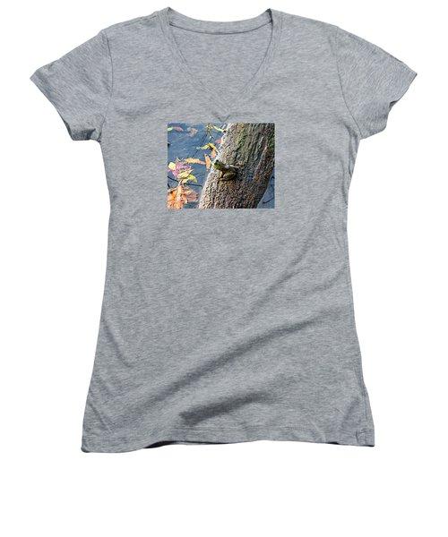 American Bullfrog Women's V-Neck T-Shirt (Junior Cut) by William Tanneberger