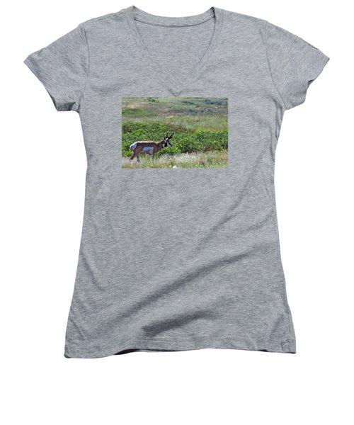 American Pronghorn Buck Women's V-Neck T-Shirt (Junior Cut) by Karon Melillo DeVega