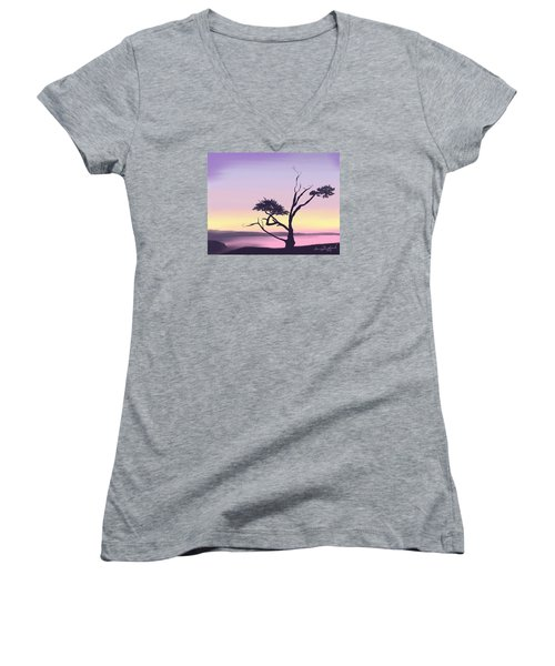 Anacortes Women's V-Neck T-Shirt (Junior Cut) by Terry Frederick