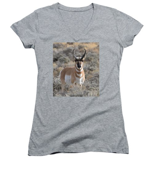 ...and The Antelope Play Women's V-Neck