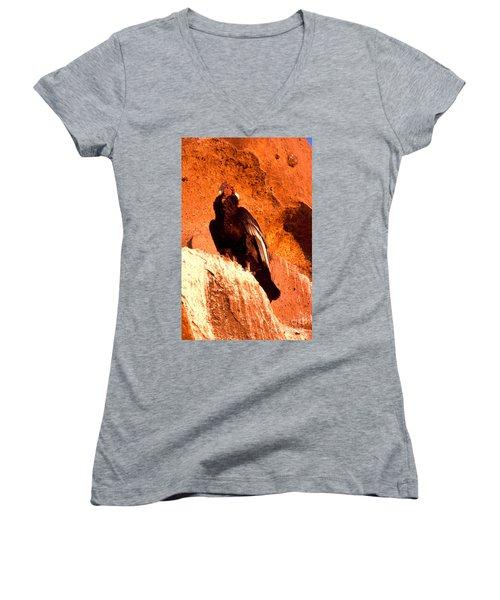 Andean Condor Women's V-Neck T-Shirt (Junior Cut)