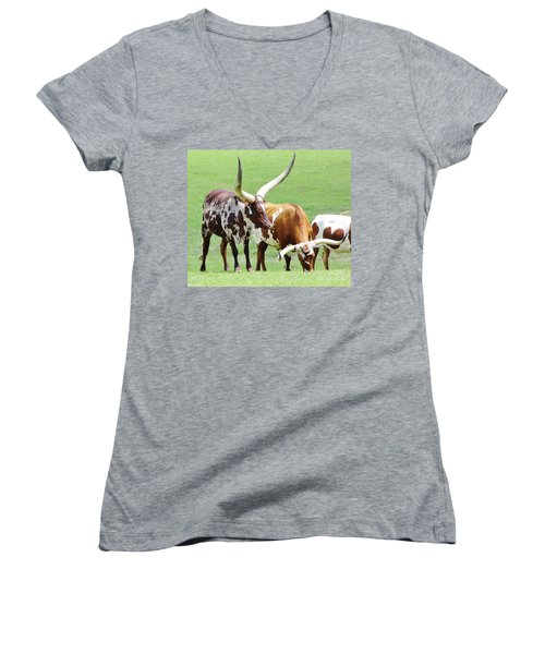 Ankole And Texas Longhorn Cattle Women's V-Neck