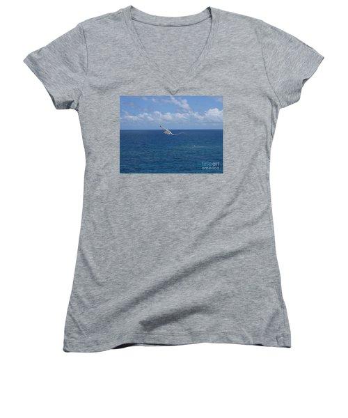 Antigua - In Flight Women's V-Neck T-Shirt (Junior Cut) by HEVi FineArt