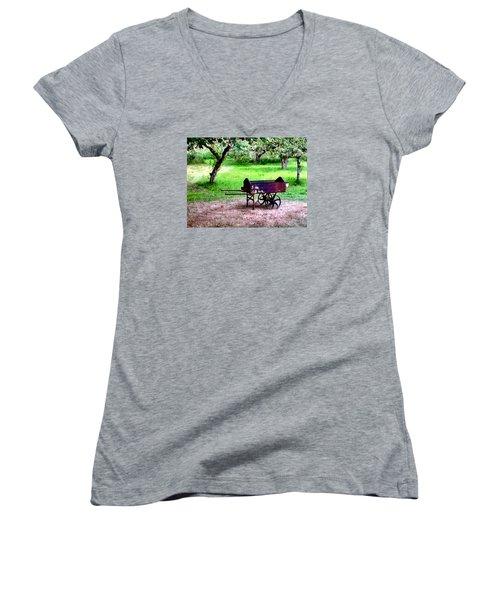 Antique Wheelbarrow Women's V-Neck T-Shirt (Junior Cut) by Sadie Reneau