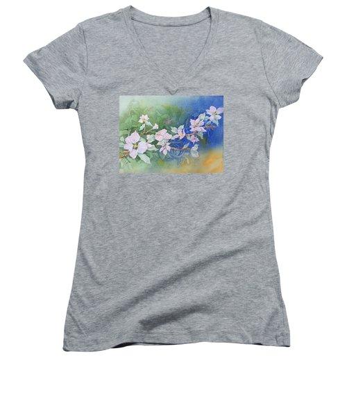 Apple Blossoms 2 Women's V-Neck T-Shirt