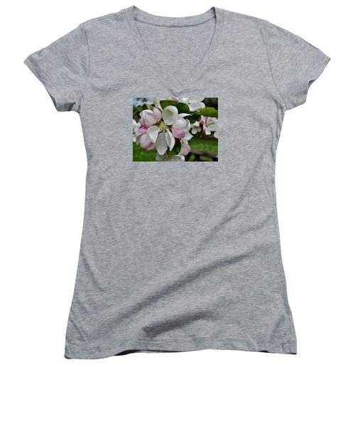 Apple Blossoms 2 Women's V-Neck (Athletic Fit)