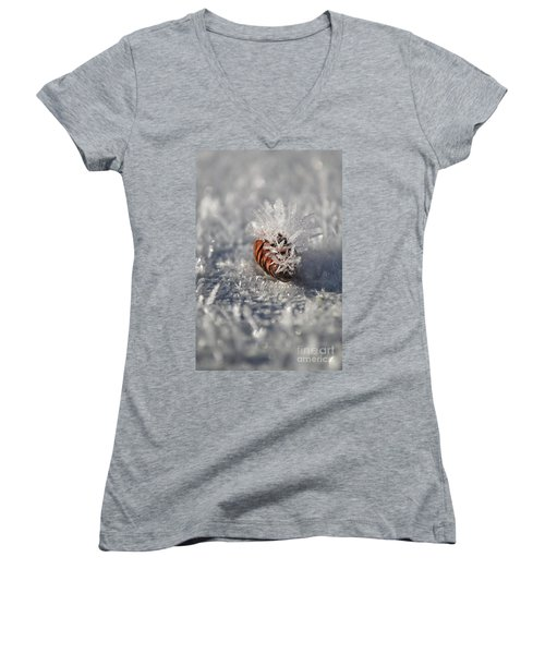 Arctic Pine Cone Porcupine Women's V-Neck T-Shirt (Junior Cut) by Brian Boyle
