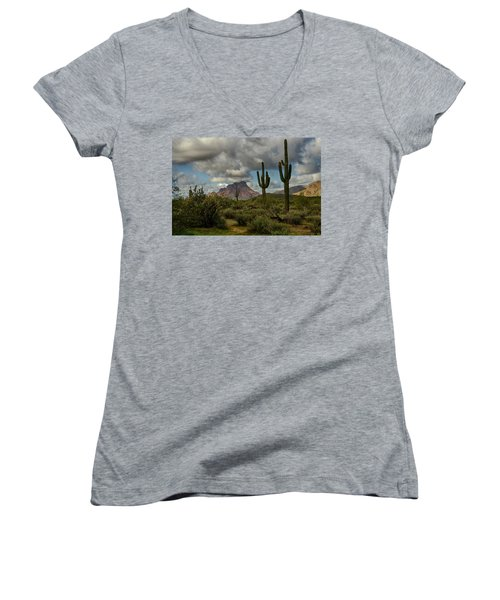 As The Clouds Pass By  Women's V-Neck