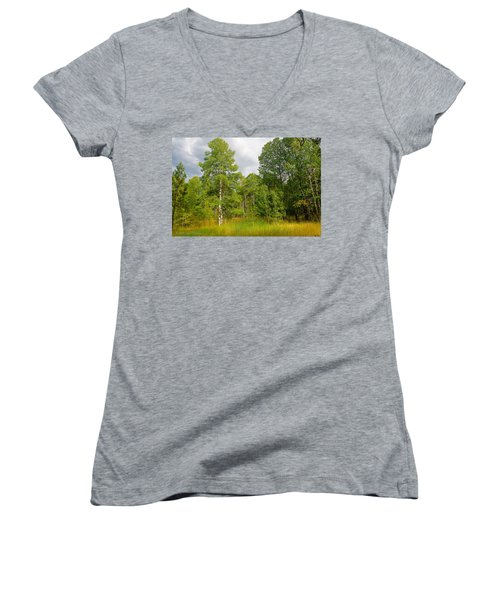 Women's V-Neck T-Shirt (Junior Cut) featuring the photograph Aspen And Others by Jim Thompson