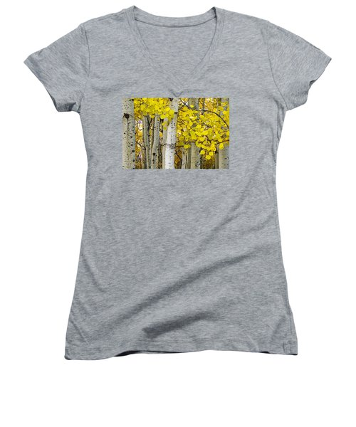Aspens At Autumn Women's V-Neck T-Shirt