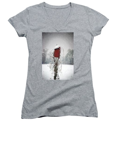 At Home In The Snow Women's V-Neck T-Shirt