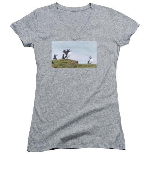 Atlantic Puffins Fratercula Arctica Women's V-Neck T-Shirt (Junior Cut) by Panoramic Images