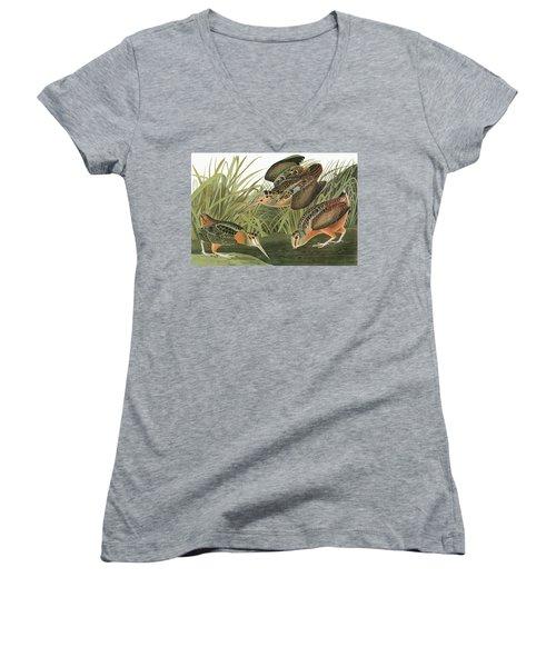 Audubon Woodcock Women's V-Neck T-Shirt