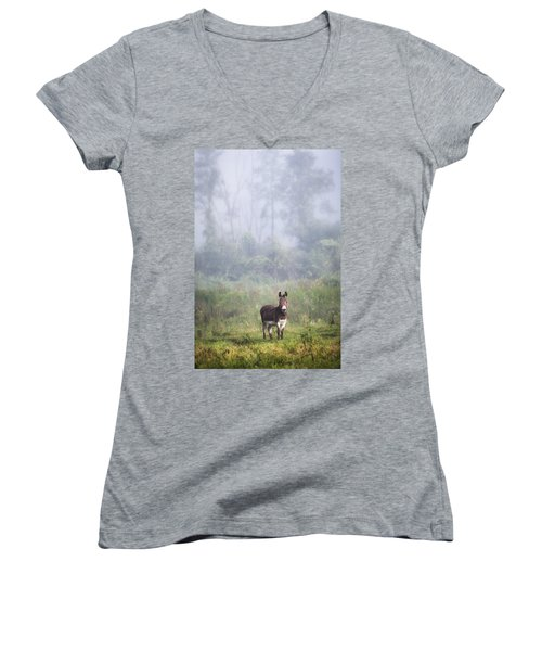 August Morning - Donkey In The Field. Women's V-Neck (Athletic Fit)