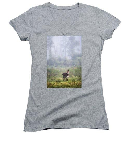 August Morning - Donkey In The Field. Women's V-Neck