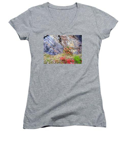 Autumn And Rocks Women's V-Neck