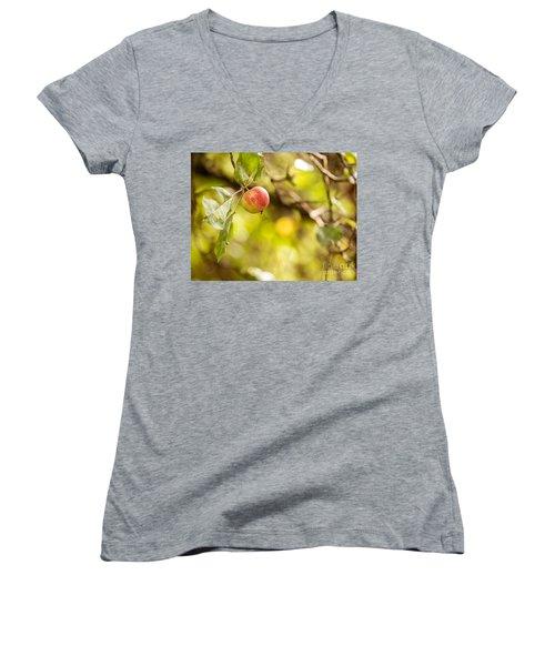 Autumn Apple Women's V-Neck T-Shirt (Junior Cut) by Matt Malloy