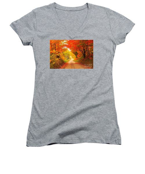 Women's V-Neck T-Shirt (Junior Cut) featuring the photograph Autumn Cameo 2 by Terri Gostola