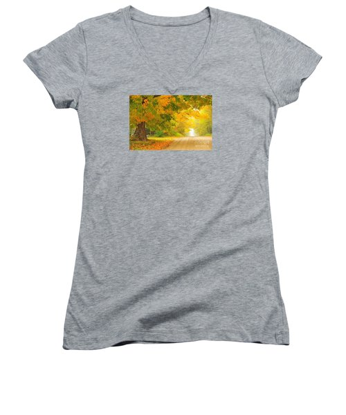 Autumn Cascade Women's V-Neck T-Shirt (Junior Cut) by Terri Gostola
