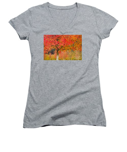 Autumn Fire Women's V-Neck T-Shirt