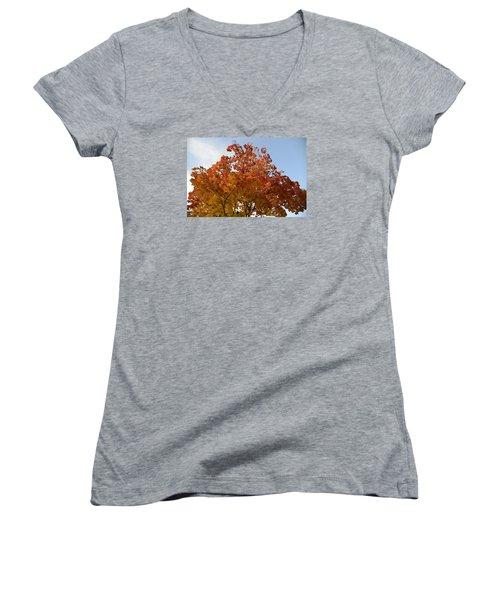 Autumn Harmony 1 Women's V-Neck T-Shirt