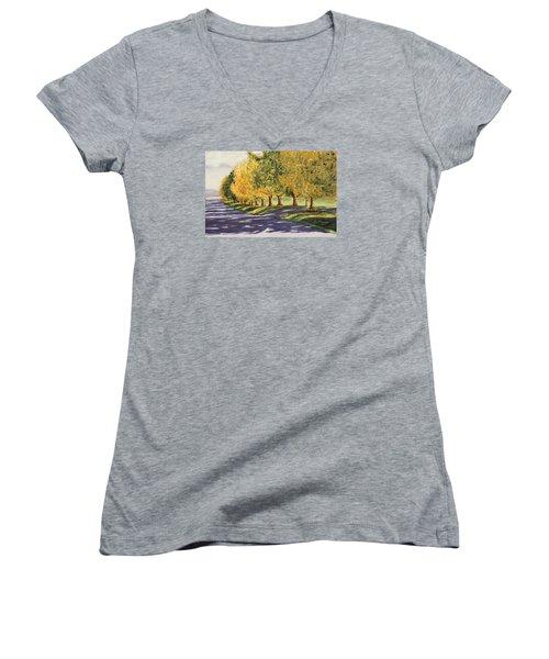 Autumn Lane Women's V-Neck T-Shirt (Junior Cut) by Alan Mager