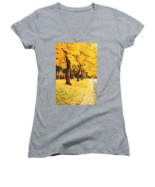 Autumn Perspective Women's V-Neck
