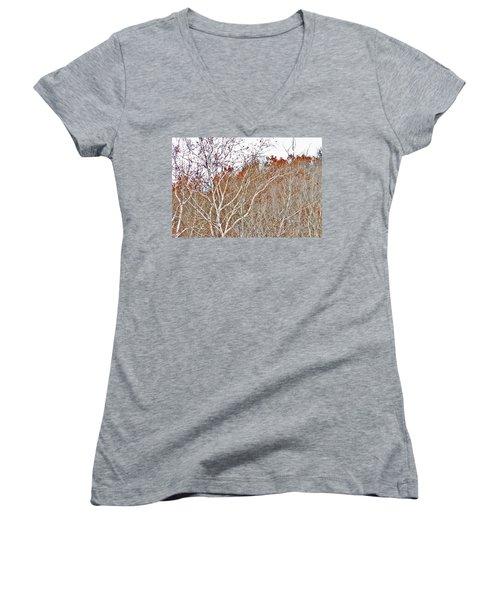 Autumn Sycamores Women's V-Neck T-Shirt