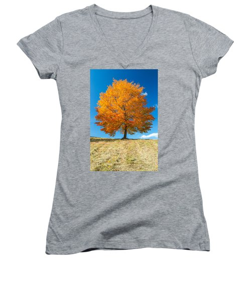 Autumn Tree - 1 Women's V-Neck T-Shirt