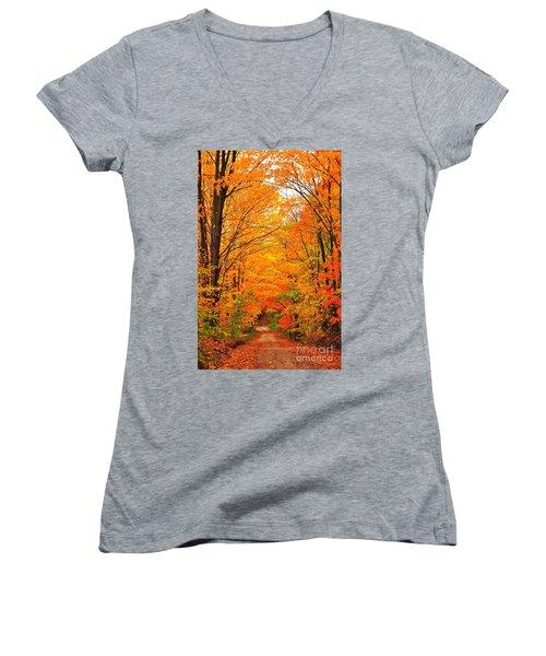 Autumn Tunnel Of Trees Women's V-Neck