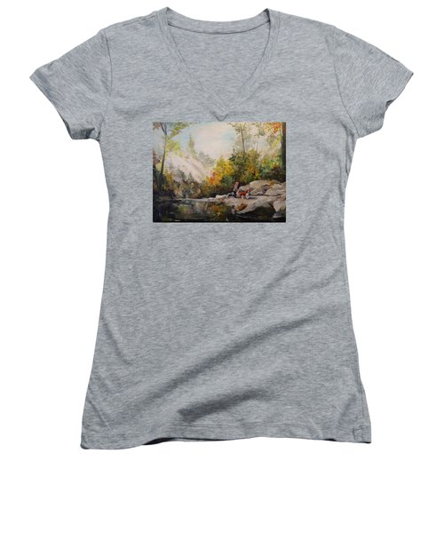Women's V-Neck T-Shirt (Junior Cut) featuring the painting Autumn Walk by Alan Lakin