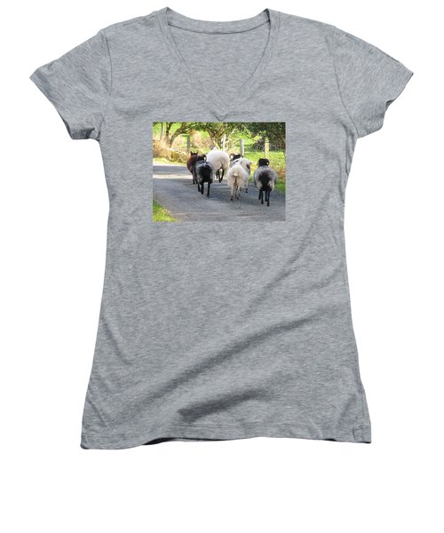 Women's V-Neck T-Shirt (Junior Cut) featuring the photograph Ba Ba Blacksheep by Suzanne Oesterling