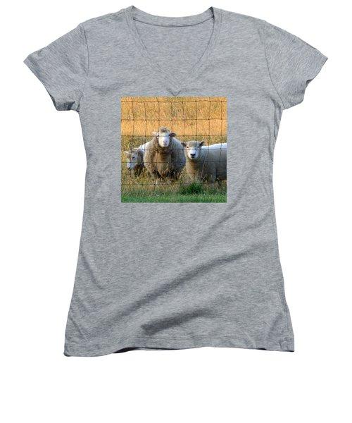 Women's V-Neck T-Shirt (Junior Cut) featuring the photograph Baaaaa by Joseph Skompski