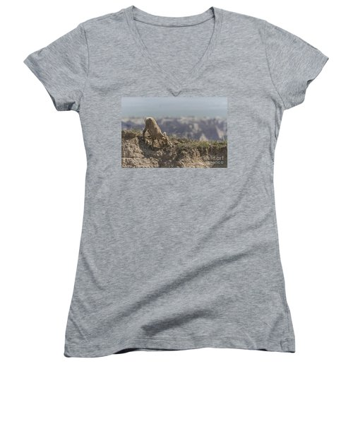 Baby Bighorn In The Badlands Women's V-Neck T-Shirt