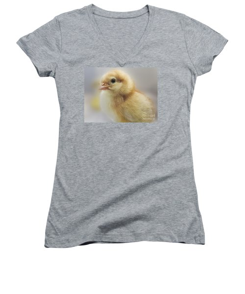 Baby Chicken Women's V-Neck (Athletic Fit)