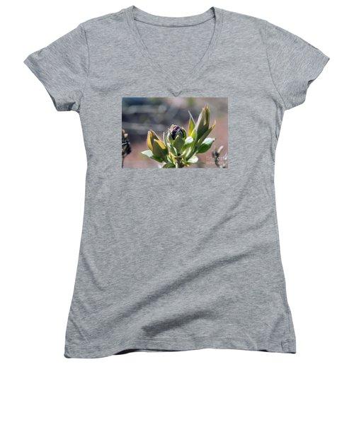 Baby Lilac Women's V-Neck T-Shirt
