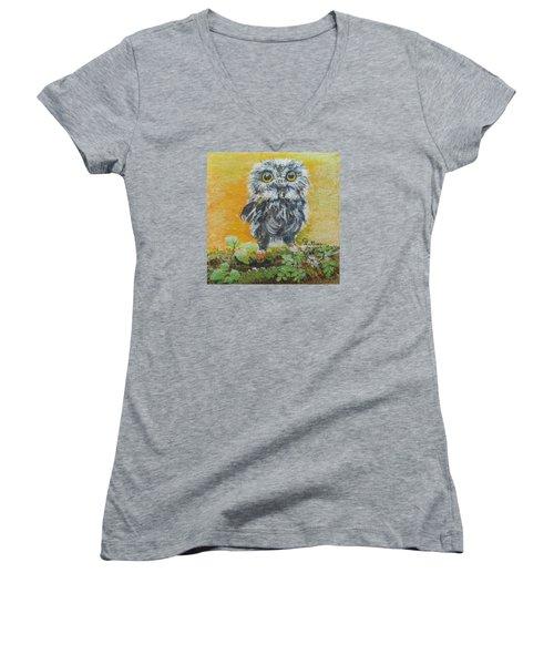 Baby Owl Women's V-Neck T-Shirt