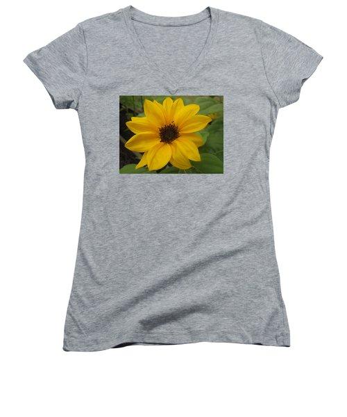 Baby Sunflower Women's V-Neck