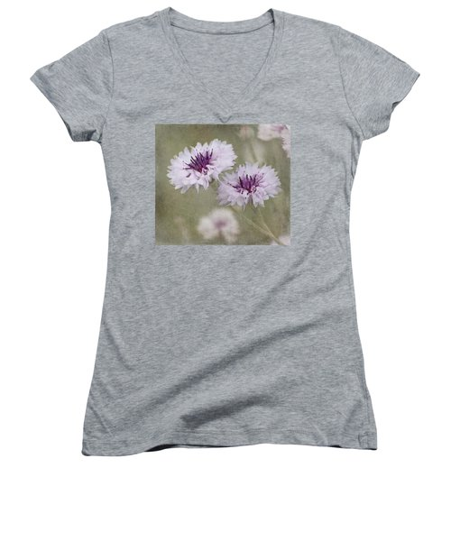 Bachelor Buttons - Flowers Women's V-Neck