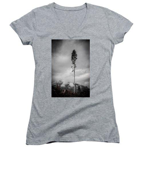 Lone Tree Landscape  Women's V-Neck