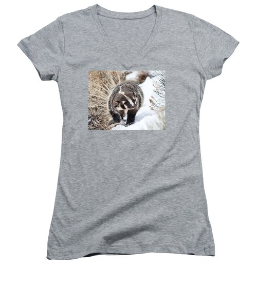 Badger In The Snow Women's V-Neck (Athletic Fit)