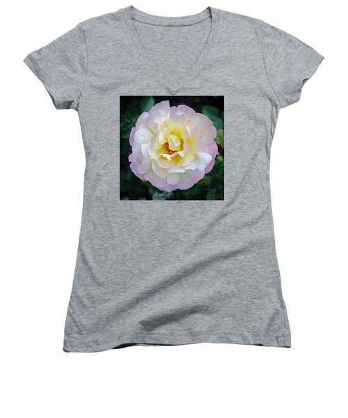 Women's V-Neck featuring the photograph Balance by Roxy Hurtubise