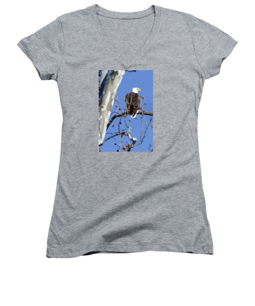 Bald Eagle Women's V-Neck T-Shirt (Junior Cut) by David Lester