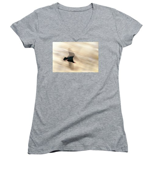 Bald Ibis Women's V-Neck (Athletic Fit)
