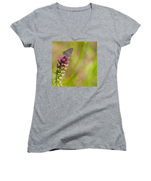 Banded Hairstreak Butterfly Women's V-Neck T-Shirt (Junior Cut) by Melinda Fawver