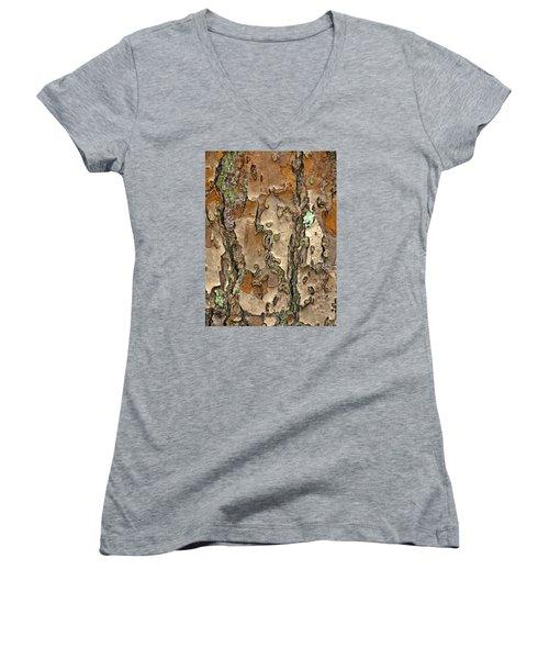 Barkreation Women's V-Neck T-Shirt (Junior Cut) by Lynda Lehmann