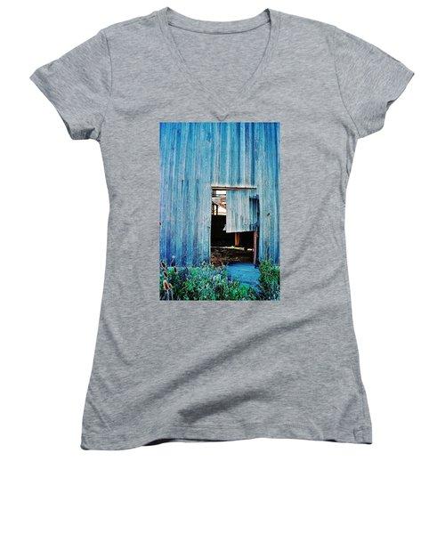 Barn Door... Monroe Co. Michigan Women's V-Neck T-Shirt (Junior Cut) by Daniel Thompson