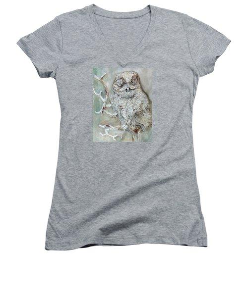 Barn Owl Women's V-Neck T-Shirt (Junior Cut) by Enzie Shahmiri