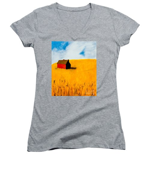 Barn Women's V-Neck T-Shirt (Junior Cut) by Stefanie Forck